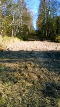 https://cdn.hurja.fi/files/anttolanseutu/media/Latupohja_syksy_2016-2_skaalattu_1.jpg