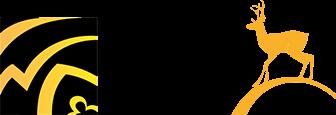 Siilinjärvi